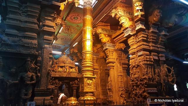Madurai Meenakshi Amman Temple (18)