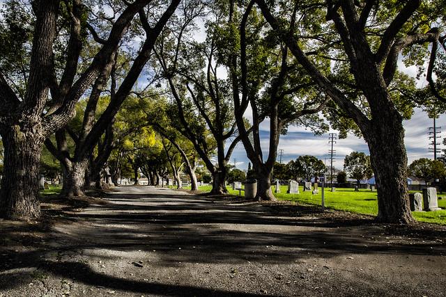 Downey Cemetery pathway