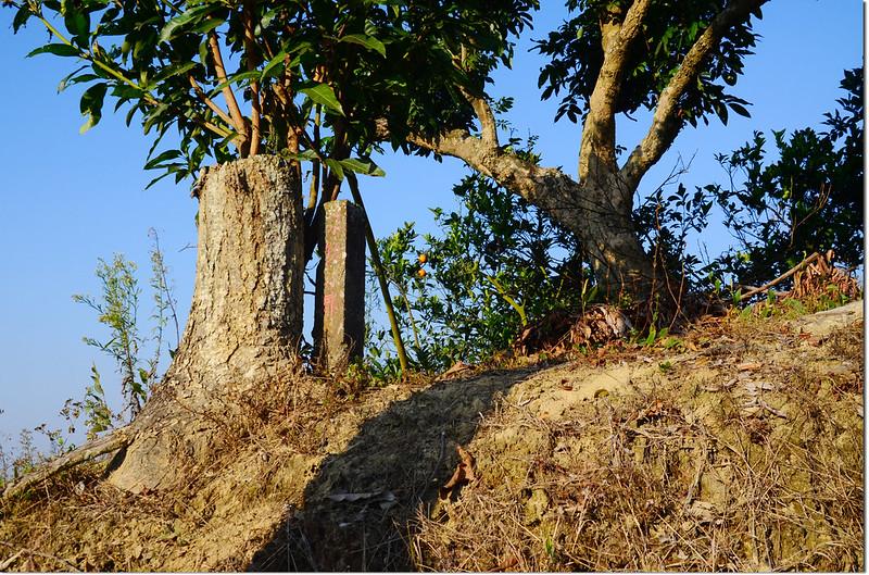 北勢坑無名水泥柱(Elev. 176 m)