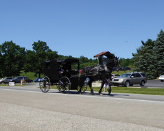 Amish Horse-Drawn Buggy Millersburg, OH