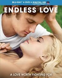 Tình Yêu Bất Tận - Endless Love (2014)