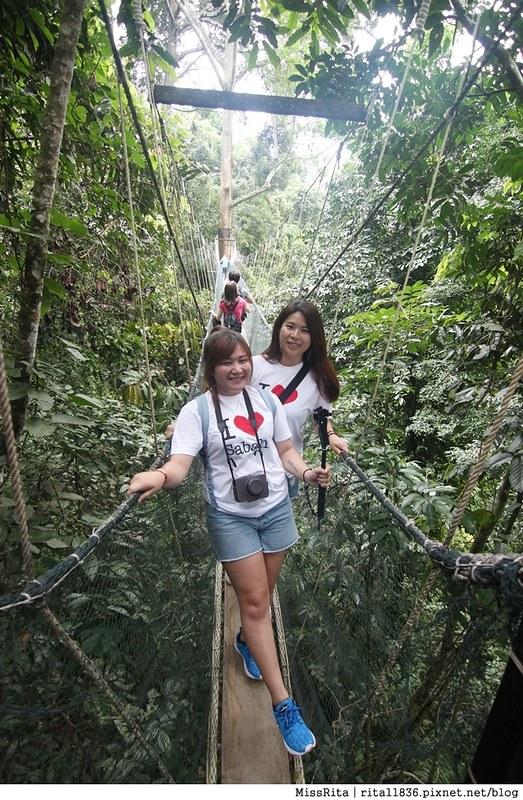 馬來西亞自由行 馬來西亞 沙巴 沙巴自由行 沙巴神山 神山公園 KinabaluPark Nabalu PORINGHOTSPRINGS 亞庇 波令溫泉 klook 客路 客路沙巴 客路自由行 客路沙巴行程65