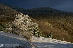 Monte San Vicino e prati del Cipollara in inverno