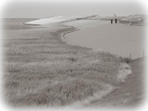 Aan de zeedijk tussen Holwerd en Wierum.