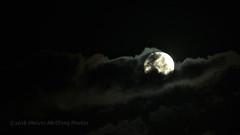 January 30 Moon