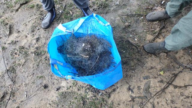 Removing an abandoned fish net at Kranji, Jan 2018
