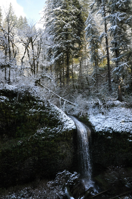Silver Falls Snow 9 @ Mt. Hope Chronicles