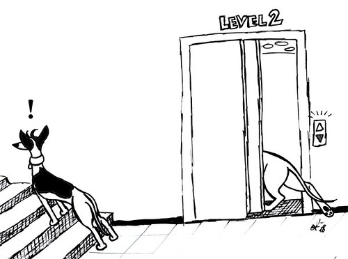 Comic-Whippet-Elevator_