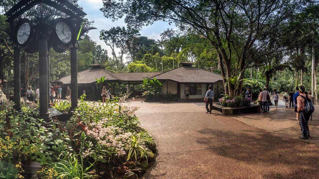 Первые прогулки в 2018. Ботанический Сад. Следующие выходные.