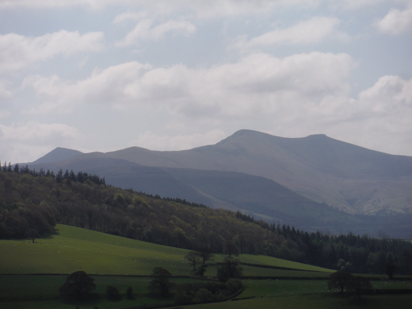 Central Beacons from Usk Valley SWC Walk 306 - Brecon Circular (via Y Gaer, Battle and Pen-y-crug)