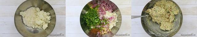 dahi ke kebab 2