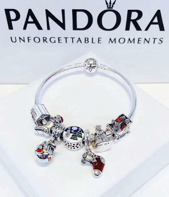 Pandora Bracelet (69)