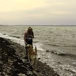 2013-09-08_14-45-09 - Hund und Frauchen spielen am Strand vom Fehmarnsund