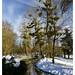 Small photo of Parc Heller - Antony