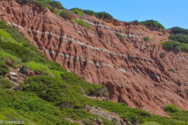 Complexo  margo  –  carbonatado  de  Silves  (Bacia Algarvia)