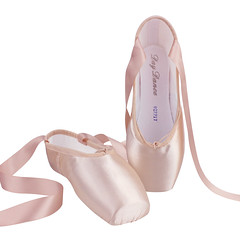 Day Dance Pointe Shoes