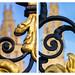 Sony 16-50 lens comparison /3