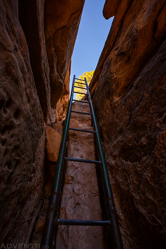 Peekaboo Ladder