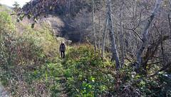 Mills Creek Trail, Burleigh Murray Ranch SP