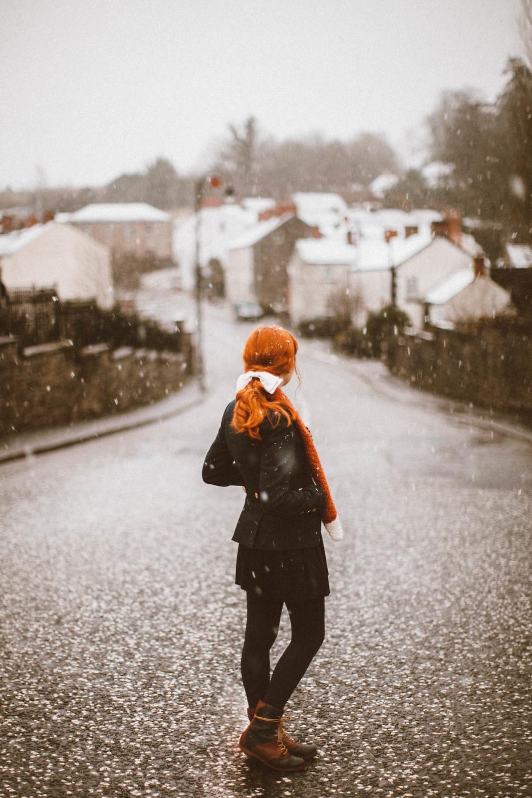 snowfox-5