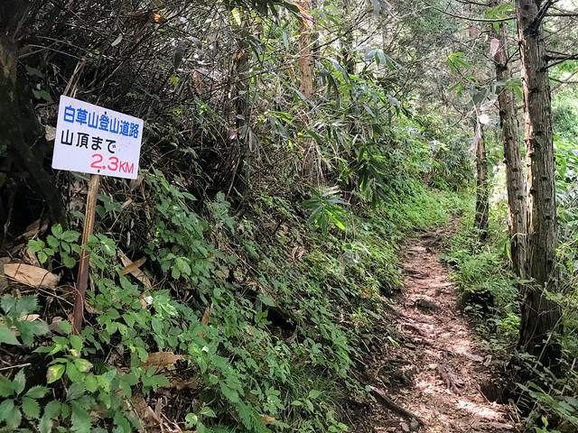 白草山 登山道 山頂まで2.3km
