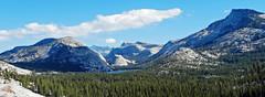 Panorama from Tioga Road, Yosemite NP 10-17