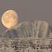 Moon in the morning sky by *Jonina*