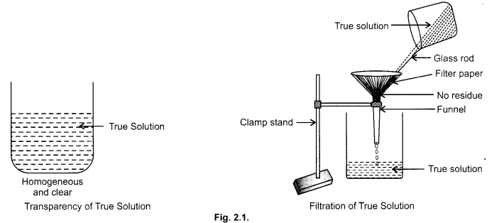 cbse-class-9-science-practical-skills-solution-colloids-suspension-2
