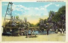 Swimming Pool, Sulphur Springs, Tampa, FL