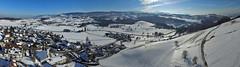 Hirzel's dron panorama