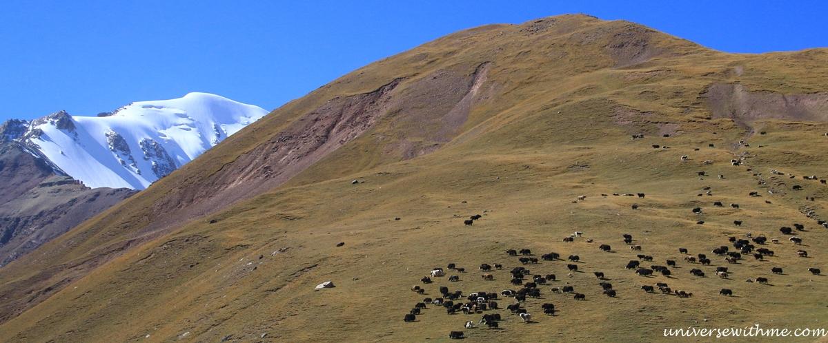 Kyrgyzstan Trip_037