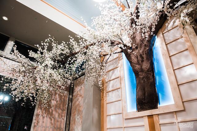 Cherry Blossom PUB-14