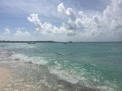 55 - Playa @ Isla Catalina
