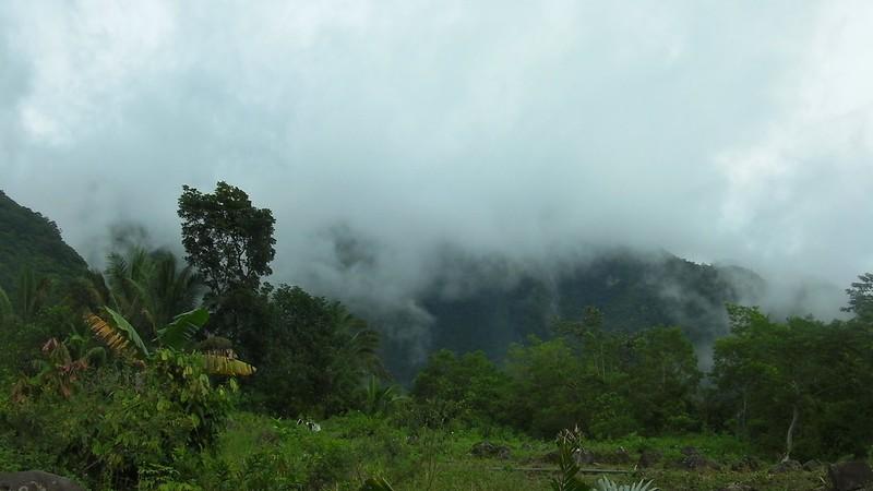 Mt. Talinis fog
