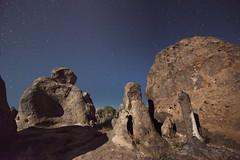 Tree, rocks, and stars in moonlight