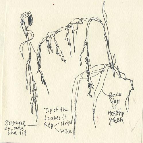 Sketchbook #112: Running and Sketching