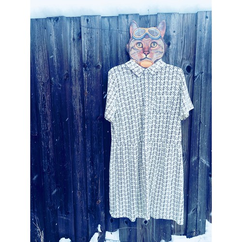 organic cotton cat dress, people tree, february 2018