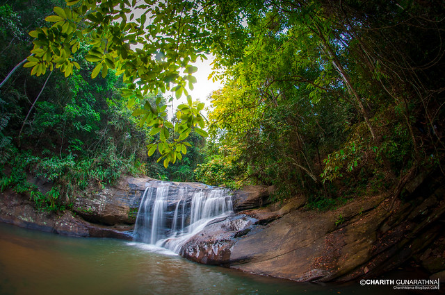 Sri Lanka - Natural Water Fall Forest