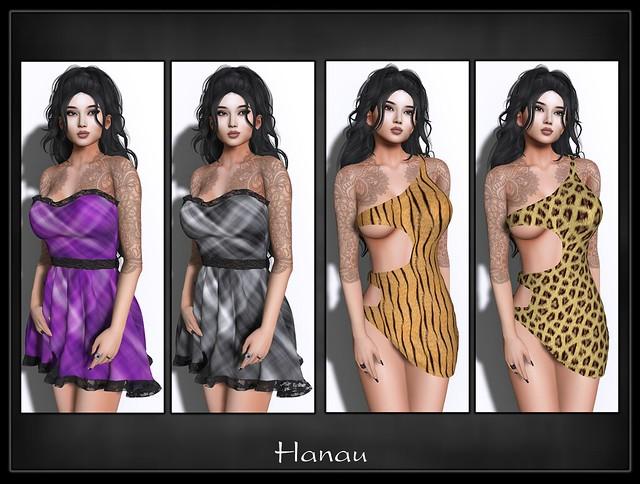 hanau2