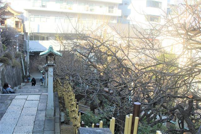 yushimatenjinume-gosyuin02050