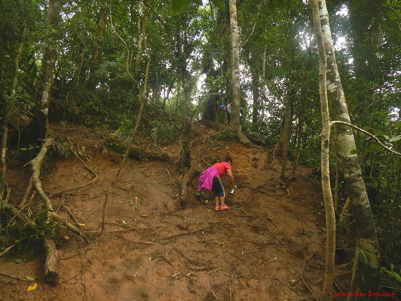Muddy Trail to Pico De Loro's summit