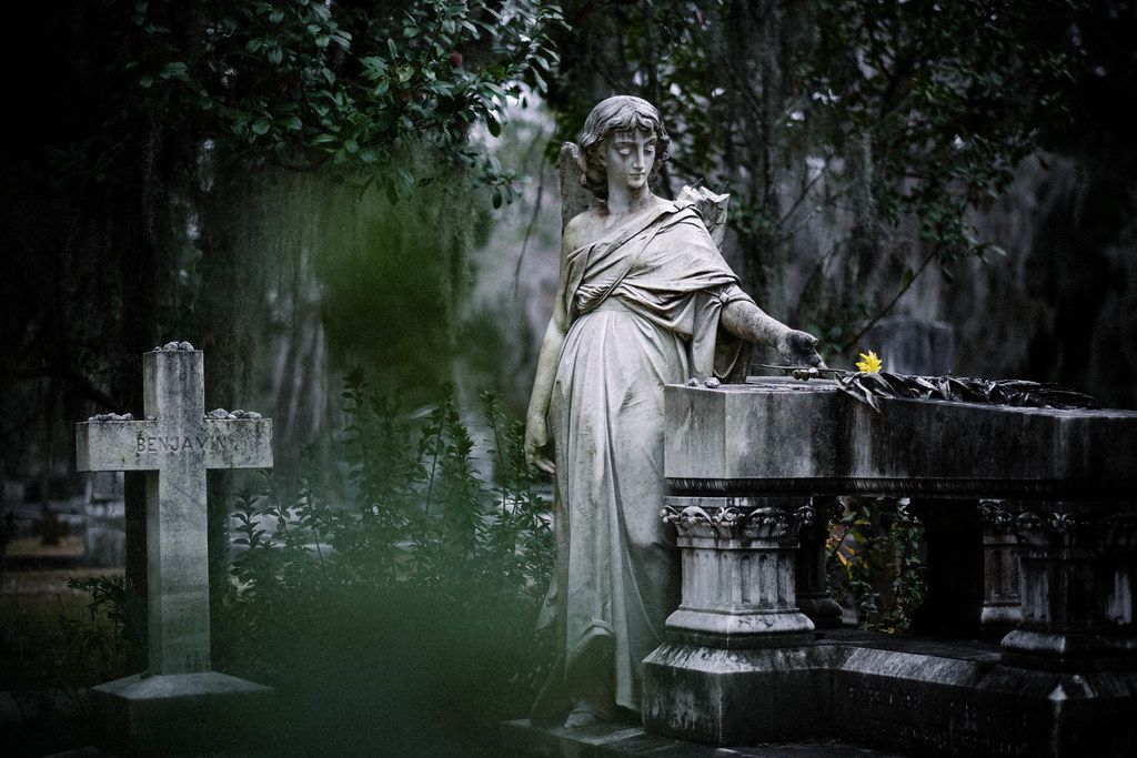 Bonaventure cemetery, Savannah, GA_DSF1278