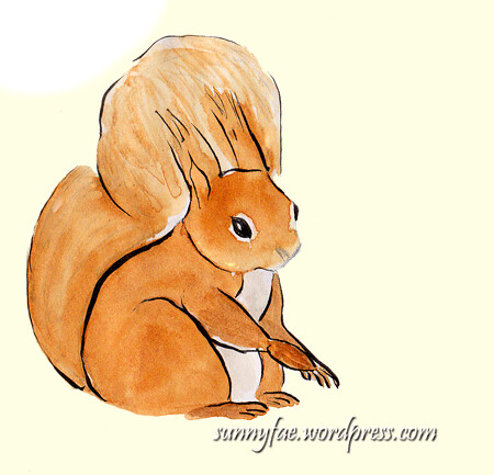 red squrrel sketch 2