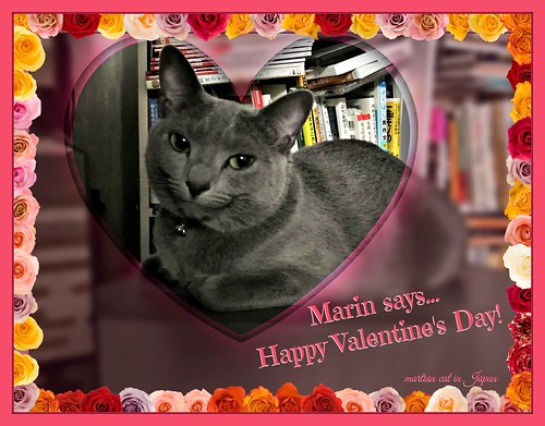 Marin says... Happy Valentine's Day!
