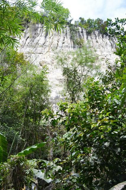 massive limestone