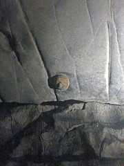 Chert nodule in limestone (Great Relief Hall, Mammoth Cave, Kentucky, USA) 4