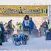 Sat, 02/03/2018 - 11:41 - Yukon Quest 2018 - Julien Schroder
