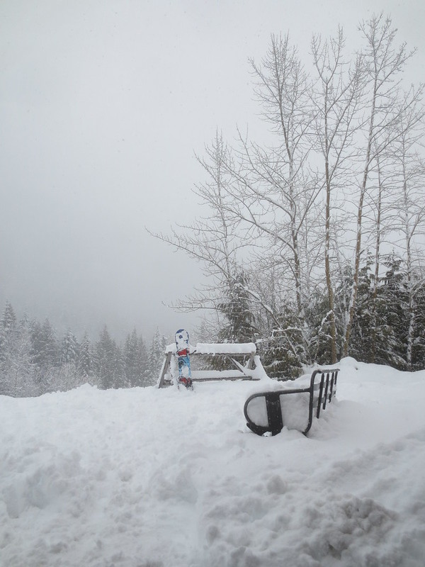 Almost buried bench
