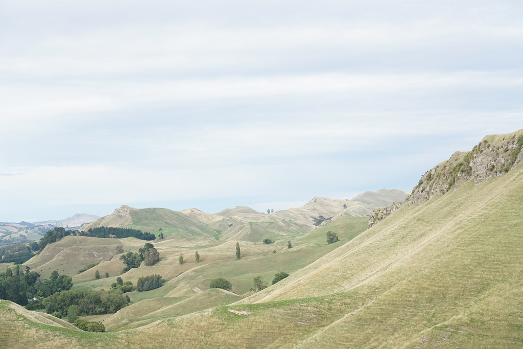 Weekend Walks - Te Mata Peak, New Zealand