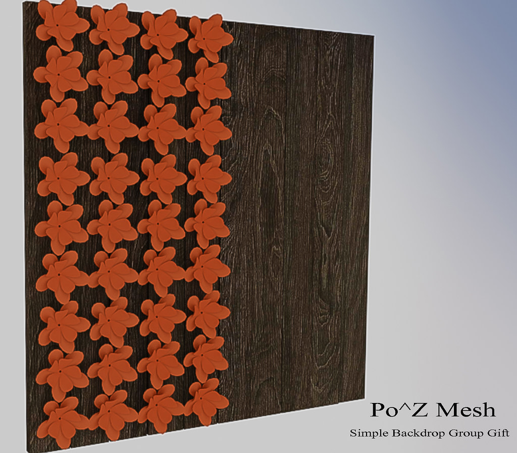 Po^Z Mesh – Simple back drop group gift